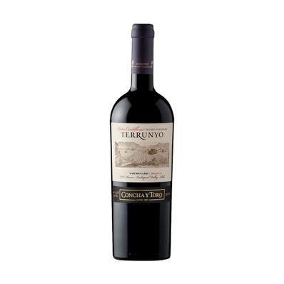 Vino-Concha-y-Toro-Terrunyo-Carmenere-750ml-TERRYOCARM-W