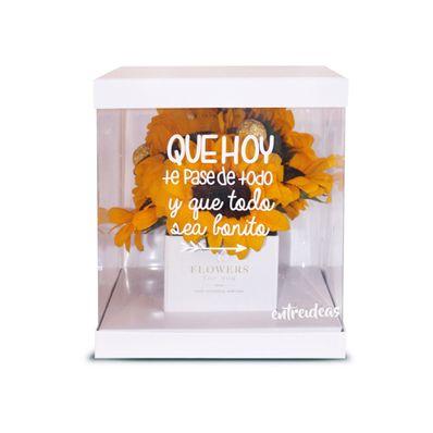 Detalle-Girasoles-Box-Entreideas-Blanco-EI-GIR-BOX-WH-W