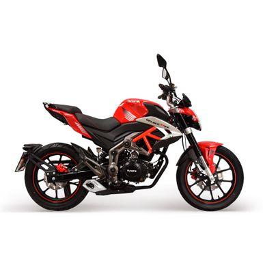 moto-tundra-veloce-TD250FOX-QVL-C-2