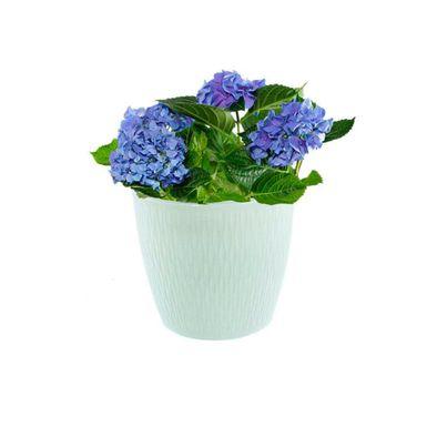 Macetero-Harmony-Garden--3-Blanco_2