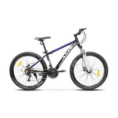 Bicicleta-AMS-AMS-BIKE-26-color-gris