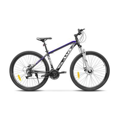 Bicicleta-AMS-AMS-BIKE-29-color-gris